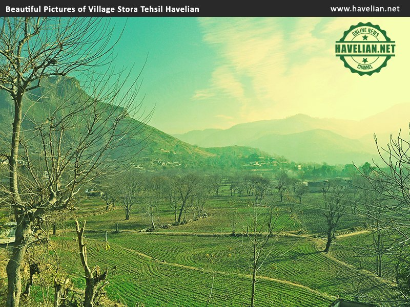 Beautiful Pictures of Village Satora Tehsil Havelian,Havelian,Satora village,beautiful pictures,pictures of havelian
