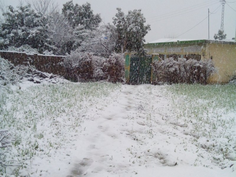 Snowfall view in tannakki Abbottabad, Nisar Jadoon, Places