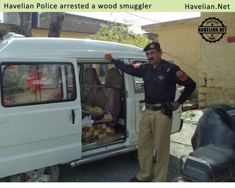 wood smuggling, police, arrested, crime