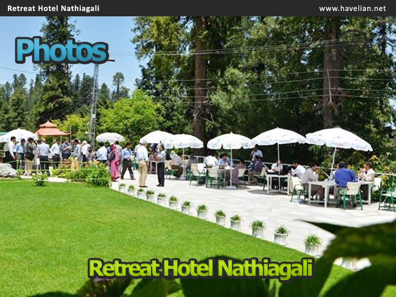 retreat, nathigali, hotels, green retreat, summer retreat, retreat hotel nathiagali, nathiagali hotels, nathiagali top hotels, hotel, resorts, nathiagali resorts