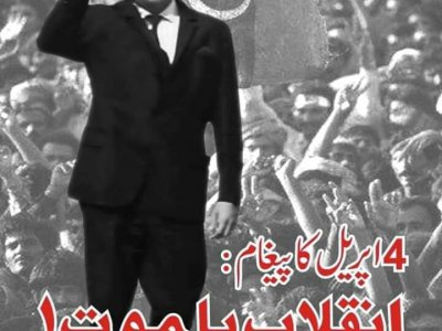 advertisment, fawad ali jadoon, hazara news, kpk news, advertisment